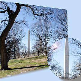 Eleanor  Bortnick - Washington Monument