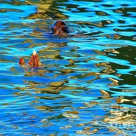 Lauren Leigh Hunter Fine Art Photography - Water Dance Seal