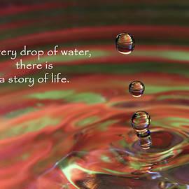 Vicki McLead - Water Drop 1