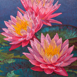 Fiona Craig - Water Lilies 10 - Sunfire
