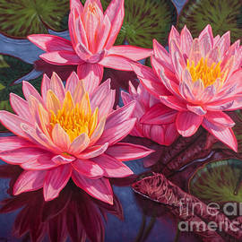 Fiona Craig - Water Lilies 3 - Sunfire