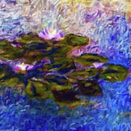 Jerome Stumphauzer - Water Lilies An Impression