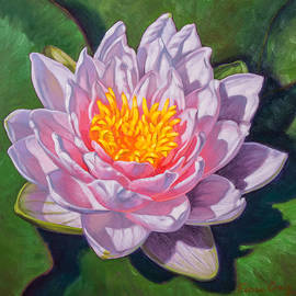 Fiona Craig - Water Lily Study 1