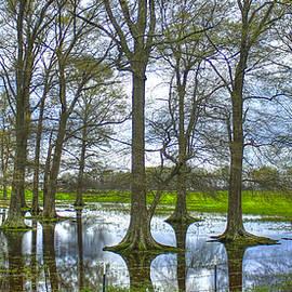 Reid Callaway - Water Oak Reflections