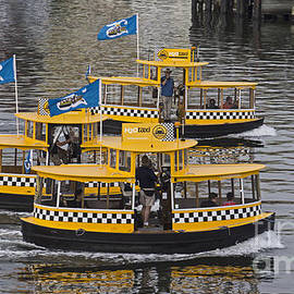 Inge Riis McDonald - Water Taxis