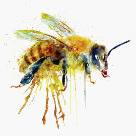 Watercolor Bee - Marian Voicu