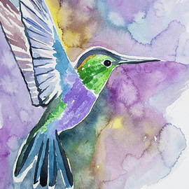 Cascade Colors - Watercolor - Green-crowned Wood Nymph