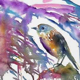 Cascade Colors - Watercolor - North Island Robin Impression