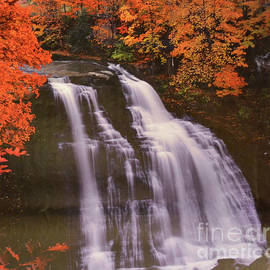 Ruth Housley - Waterfall At Autumn