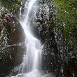 Cristobal  Alvarado Minic - Waterfall