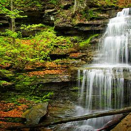 Carolyn Derstine - Waterfalls on Little Three Mile Run