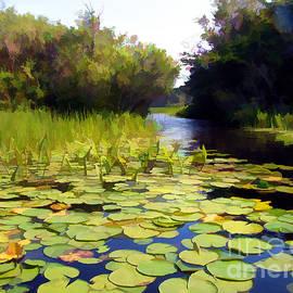 Betsy Zimmerli - Waterlily Passage