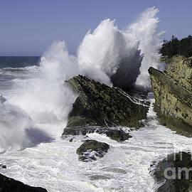 Bob Christopher - Wave Action Shore Acres Oregon 8