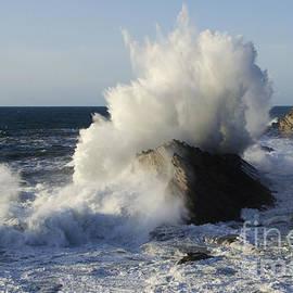 Bob Christopher - Wave Action Shore Acres Oregon