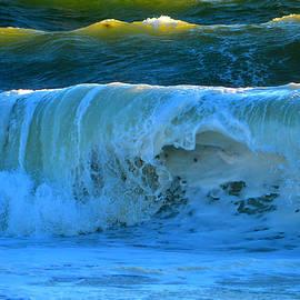 Dianne Cowen - Waves of Grace