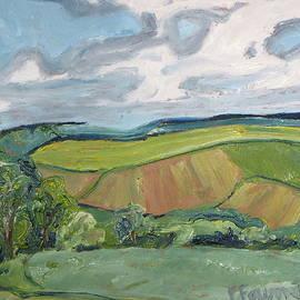 Francois Fournier - Waving valley