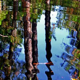 George Bostian - Wavy Reflections 001