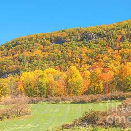 Regina Geoghan - Wawayanda Mountain NJ Autumn