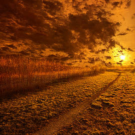 Phil Koch - We Ourselves Must Walk the Path