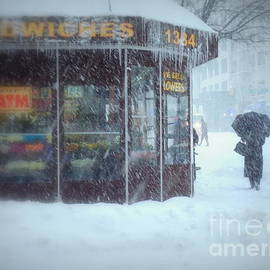 Miriam Danar - We Sell Flowers - Winter in New York