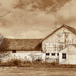 William Sturgell - Weathered Barn And Silo in Sepia
