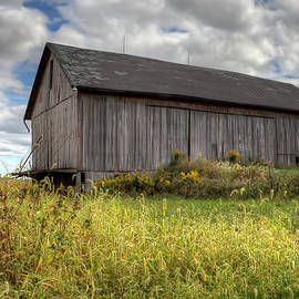 William Sturgell - Weathered barn in the Weeds