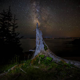 Brent L Ander - Weathered Stump under the stars