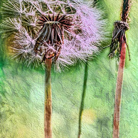 Jean OKeeffe Macro Abundance Art - Weeds