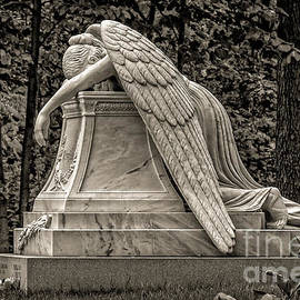 Gene Healy - Weeping Angel - sepia