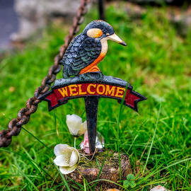 Adrian Evans - Welcome Sign
