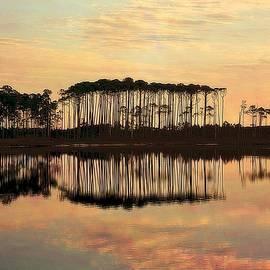 Toni Abdnour - Western Lake Sunset