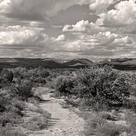 Gordon Beck - Western Skies, Monochrome