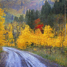 R christopher Vest - Wet Road - Peak Of Autumn