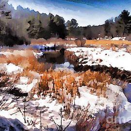 Betsy Zimmerli - Wetland Stream
