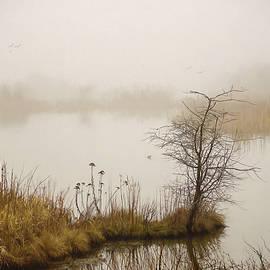 Jordan Blackstone - Wetland Wonders of Winter