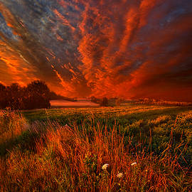 Phil Koch - What About Now