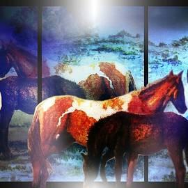 Hartmut Jager - What  Horses Dream