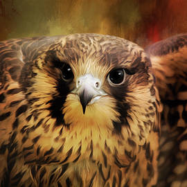 Jordan Blackstone - What Matters - Falcon Art