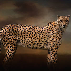 Jordan Blackstone - What You Imagine - Cheetah Art