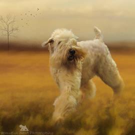 Lisa Mullins - Wheaten Field Of Gold