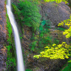 Michael Mazaika - When Light and Water Falls - Horsetail Falls #3B - Columbia River Gorge National Scenic Area, Oregon
