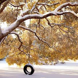 Karen Wiles - When Winter Blooms