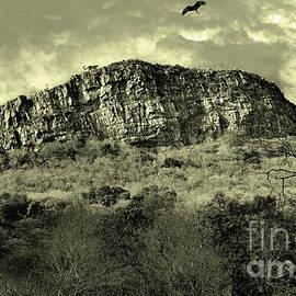 Manjot Singh Sachdeva - Where Eagle Dare-II