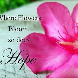 Melinda Baugh - Where Flowers Bloom