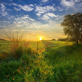 Phil Koch - Where My Heart Belongs