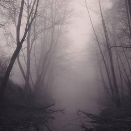 Piotr Tyminski - Where witches lurk #2