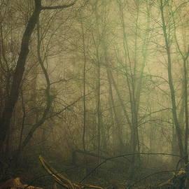 Piotr Tyminski - Where witches lurk