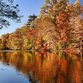 Allen Beatty - Whippany River Reflection
