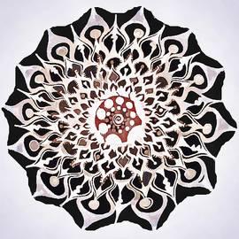Catherine Lott - Whirl Pop Art