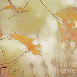 Hal Halli - Whisper of Autumn